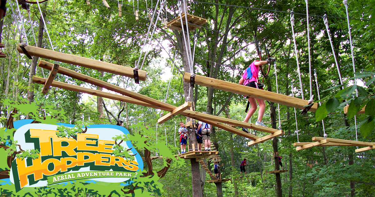 kids tree houses with zip line flying fox treehoppers zip line ropes course tampa bay florida adventure park