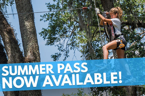 3 month summer pass to TreeHoppers