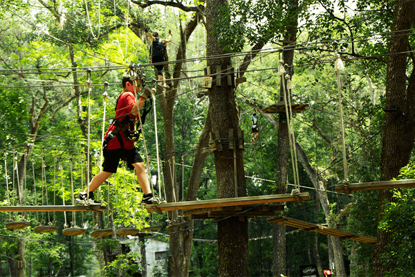 Big steps on a sky bridge - TreeHoppers - Dade City, FL