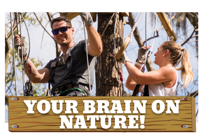 White River Ziplines - Your Brain on Nature